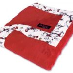 Dr. Seuss Cat In The Hat Red Framed Receiving Blanket